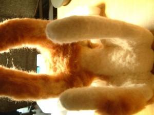 羊毛フェルトでリアル猫作成 植毛3