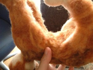 羊毛フェルトでリアル猫 植毛