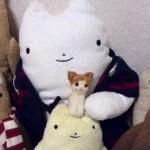 20140426_羊毛フェルト 茶ブチの猫 ごあいさつ