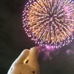 戸田橋の花火大会に行ってきました