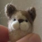 20150201_羊毛ハチワレ猫マスコット