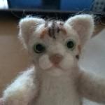 羊毛フェルト猫 額の柄