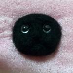 20150108 black cat03