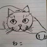 20160224cat